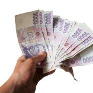 Rozdělení zisku – výplata podílu na zisku